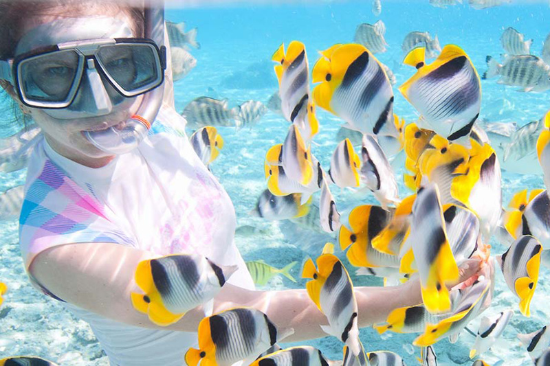 Woman diving with tropical fish | The Romantic Tourist